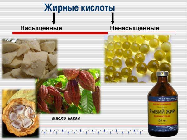 Насыщенные жирные кислоты